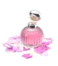 kostenlose parfumproben